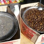 Street food - snails on left, and I'm not sure if those are beans or bugs on the right