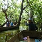 Rafting through treetops near Kompong Phluk